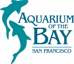 Aguarium of the Bay San Francisco