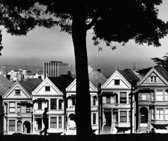 View of houses on Steiner Street, from Alamo Square Park