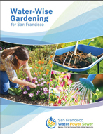 Water-wise Gardening for San Francisco
